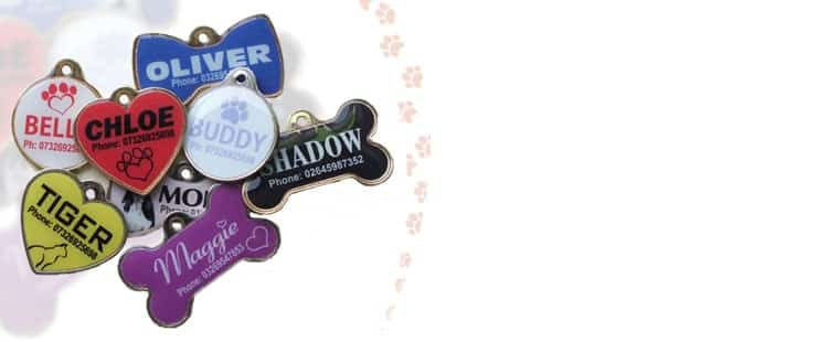 design-full-colour-pet-tags-online